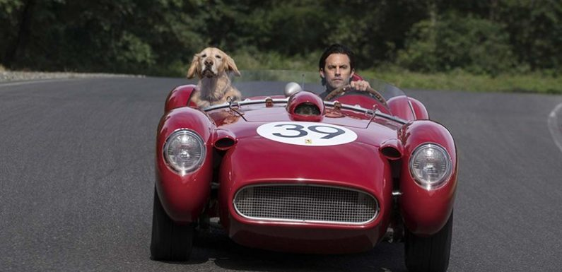 Movie Review: 'The Art of Racing in the Rain'