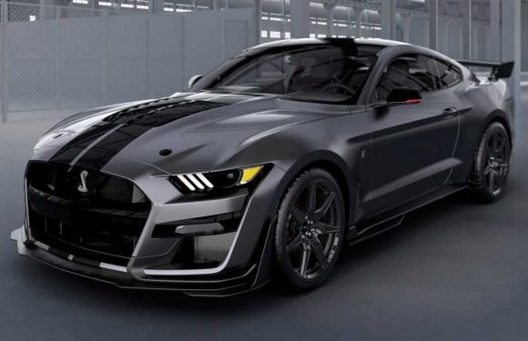 One-Off 2020 Shelby GT500 Venom Will Be Raffled Off For A Good Cause