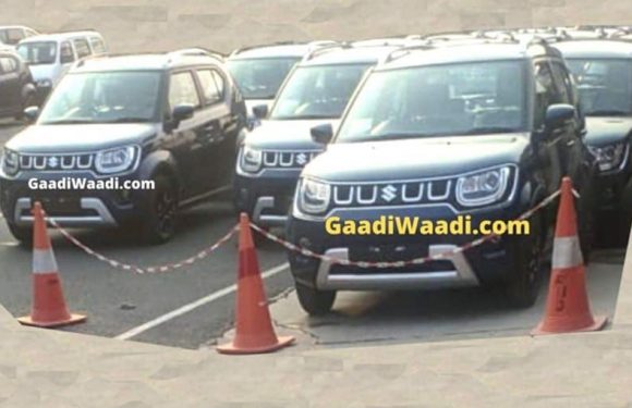 2020 Maruti Suzuki Ignis Spotted In India For The First Time