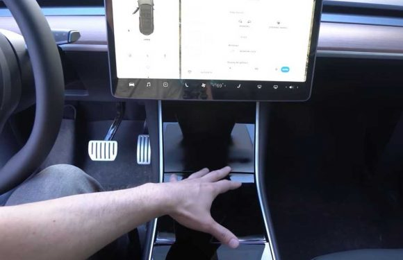 See How Tesla Model Y Center Console Differs From Model 3