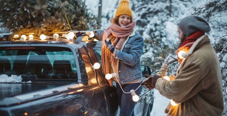 Car insurance can be invalidated by installing Christmas decorations on a vehicle