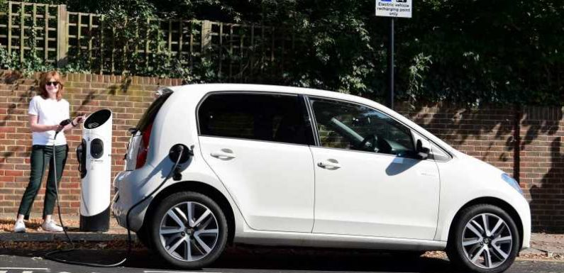 SEAT Mii electric: long-term test review