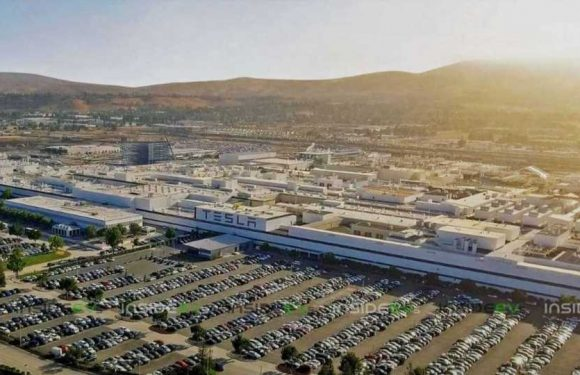 Tesla's Fremont Factory Reopens With High Model S And Model X Demand