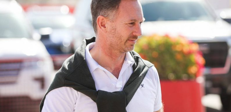 Christian Horner 'winced' watching Drive to Survive