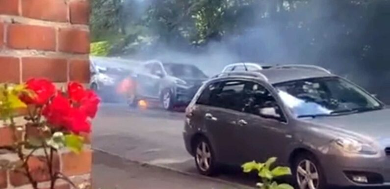 Hyundai Kona Electric Fires In Norway And Korea Cause Concern