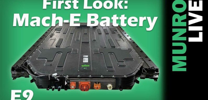 Watch Ford Mustang Mach-E Battery Removal By Munro Live