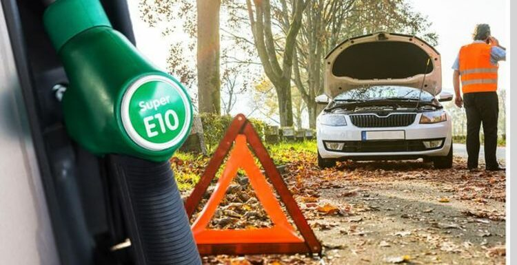 E10 fuel warning: New petrol could 'damage' vehicles and 'reduce performance'