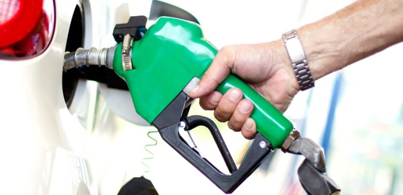 E10 petrol explained: UK prices, checker tool and is it OK for your car?