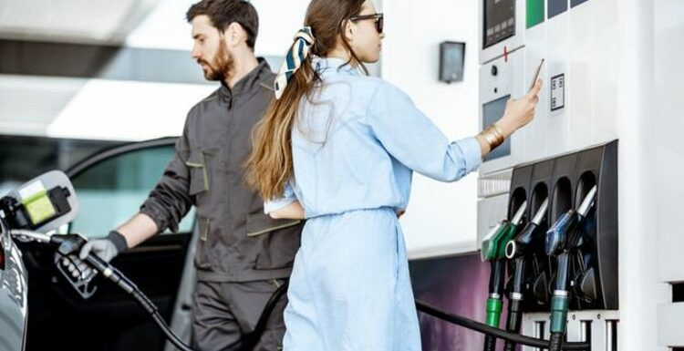Petrol car owners set to 'suffer' and 'spend more money' due to E10 fuel changes, warns AA