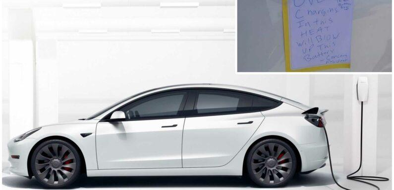 """Concerned Resident"" Unplugs Tesla Model 3 Over Fire Fears"