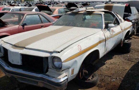 1975 Oldsmobile Cutlass Supreme W-25 Hurst Edition Is Junkyard Treasure