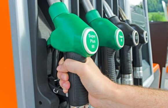 Classic car owners urged to use fuel with 'lower ethanol content' after E10 fuel updates