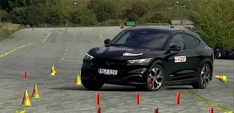 Watch the Ford Mustang Mach-E Flub the Moose Test
