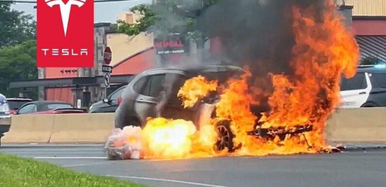 You Won't See It On TV: Tesla Owner Saves Driver Of Burning BMW X1