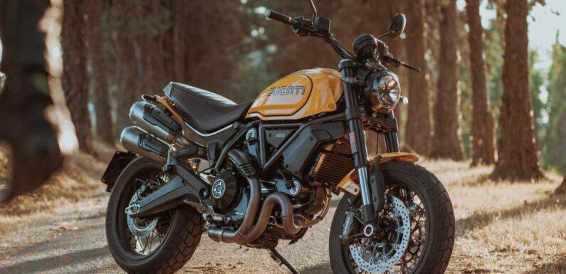 2022 Ducati Scrambler 1100 Tribute Pro joins lineup – paultan.org